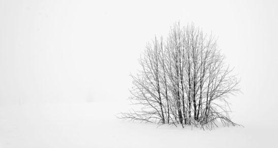 Wintergewitter über Halle – ein seltenes Phänomen